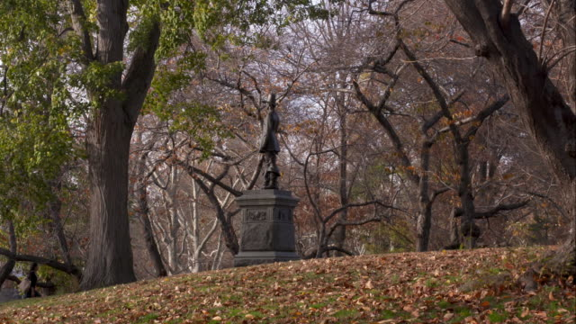fall foliage in central park.  the new england pilgrim statue is featured. - pellegrino video stock e b–roll
