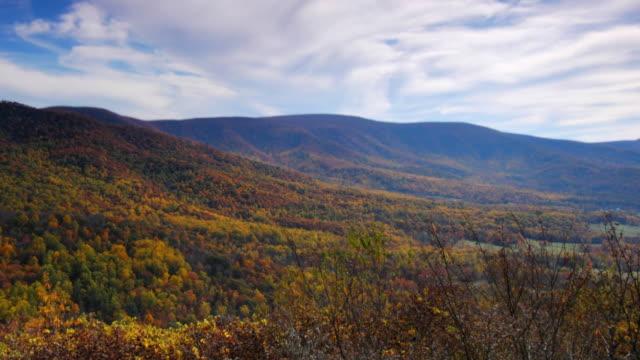 秋の紅葉 - バージニア州点の映像素材/bロール