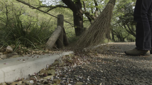 fallen leaves and blossom being swept from path with traditional broom. gyokudo art museum, tokyo, japan. - menschliche gliedmaßen stock-videos und b-roll-filmmaterial