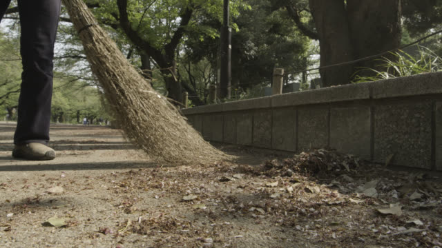 Fallen leaves and blossom being swept from path with traditional broom. Gyokudo Art Museum, Tokyo, Japan.