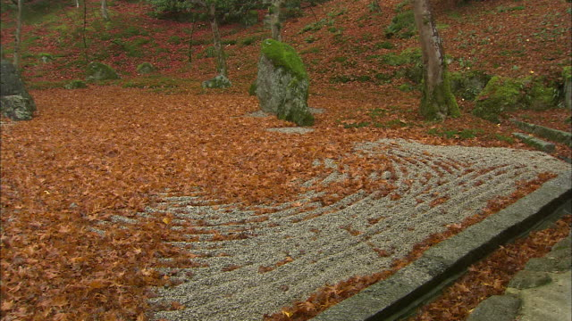 fallen leaves litter a gravel pond at a temple. - 福岡県点の映像素材/bロール