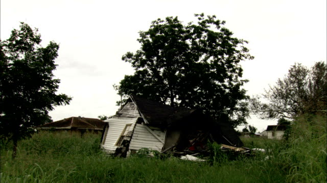fallen tree and collapsed house in field in the aftermath of hurricane katrina available in hd. - hurricane katrina stock videos and b-roll footage