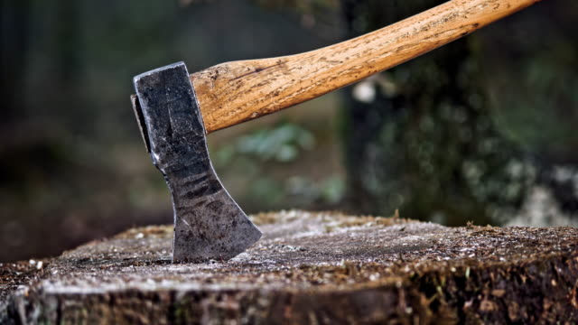 slo mo ds falling axe wedges into the tree stump - ceppaia video stock e b–roll