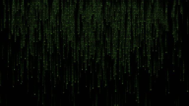 fallande binär kod data. gröna bokstäver mot svart bakgrund - binär kod bildbanksvideor och videomaterial från bakom kulisserna