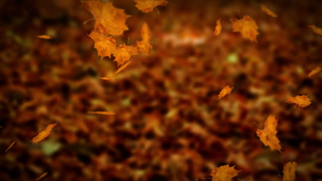 Falling leaves autumn loopable