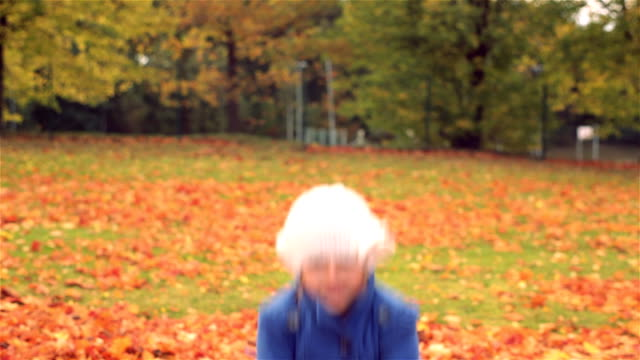 falling leaves - mitten stock videos and b-roll footage