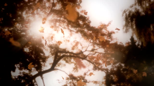 Falling leaves with lens flare loop
