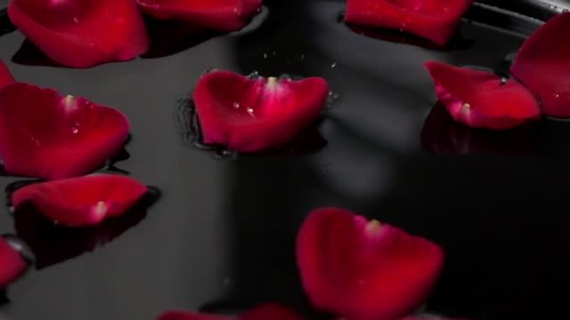 falling rose petals in water slow motion - petal stock videos & royalty-free footage
