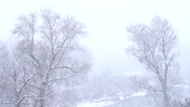 Falling Snow Along Scenic River