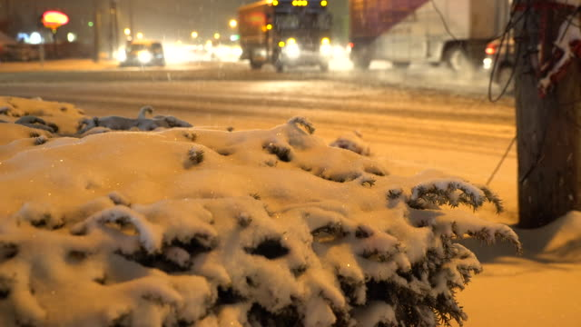 Falling snow covers bushes and shrubs in Suffolk County Long Island during a night time snow storm Vehicle traffic navigates slippery snow covered...