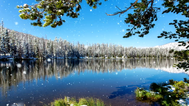 falling snow on clear mountain lake - yellowstone national park stock videos and b-roll footage
