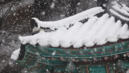 Falling snow over korean traditional house roof in Gangneung, Gangwon-do Province
