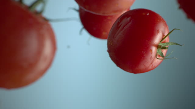 falling tomatoes - tomato stock videos & royalty-free footage