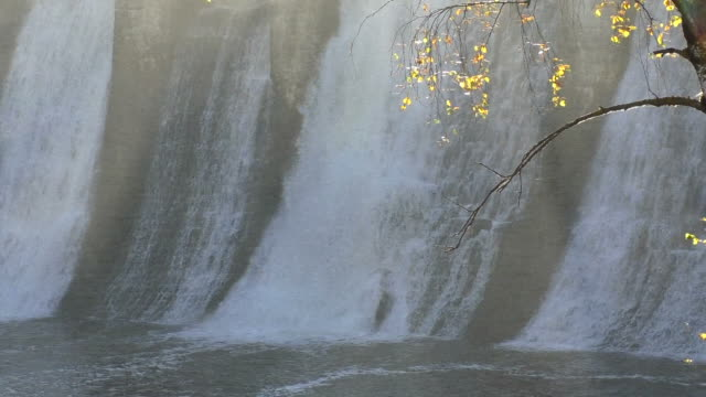 falling water of the dam. tree in the foreground - energia idroelettrica video stock e b–roll