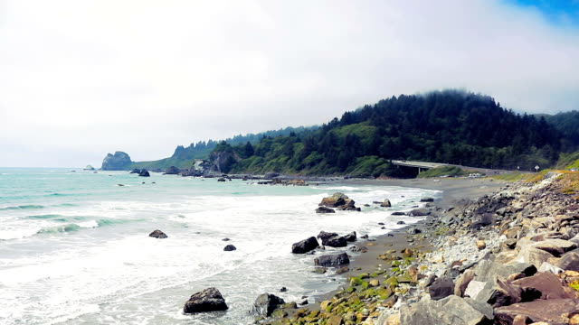 false klamath cove in redwood national park - redwood forest stock videos and b-roll footage