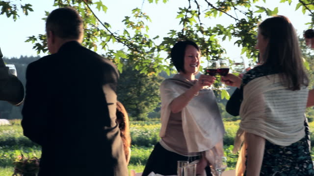 PAN MS Family and friend standing up to toast at banquet table outdoors in field/Washington, USA