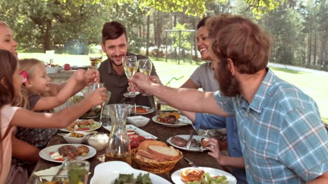 vídeos de stock, filmes e b-roll de ds família e amigos, levantando os óculos na mesa de piquenique - almoço