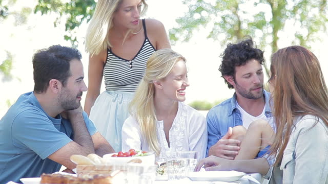 family and friends spending time together outdoors - picnic stock videos and b-roll footage