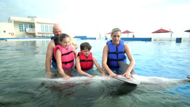 stockvideo's en b-roll-footage met familie en trainer in water met dolfijnen, kinderboerderij buik - 35 39 years