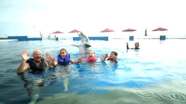 stockvideo's en b-roll-footage met familie en trainer in water met dolfijn - 35 39 years