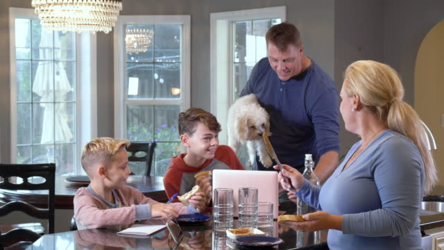 family at home eating lunch, doing homework - 8 9 years stock videos & royalty-free footage