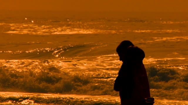 family at the beach silhouette 1 - five people stock videos & royalty-free footage