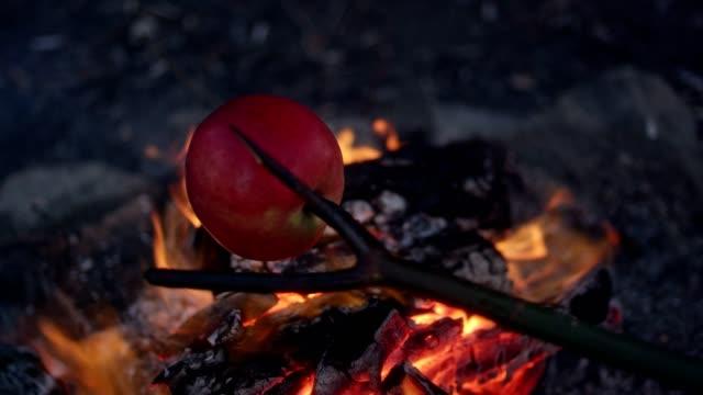 vidéos et rushes de famille de cuisson des pommes dans le feu de joie. plaisirs d'hiver. riverside, dans la ville - manteau et blouson d'hiver