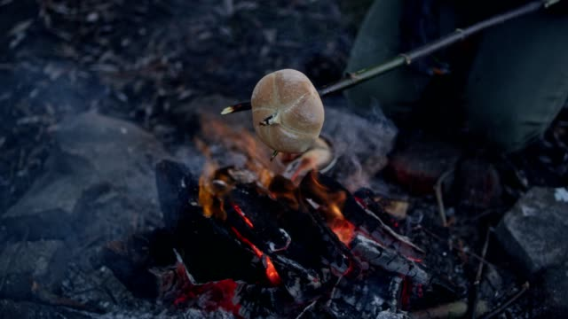 family baking sausages and buns in bonfire. winter fun. riverside in the city - bonfire stock videos & royalty-free footage