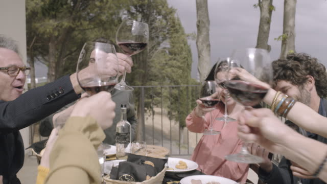 family celebrating and toasting with wine - italien stock-videos und b-roll-filmmaterial