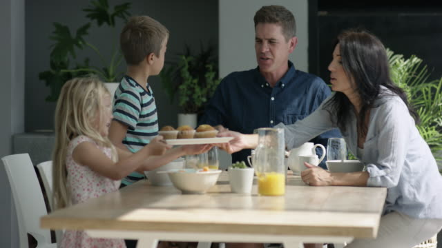 family cleaning table - 45 49 anni video stock e b–roll