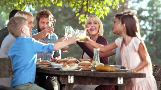 vidéos et rushes de familles lunettes sonnante à la table de pique-nique sur une journée ensoleillée - famille nombreuse