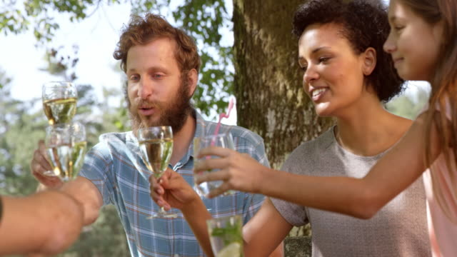 family clinking glasses at the picnic table - white wine stock videos & royalty-free footage