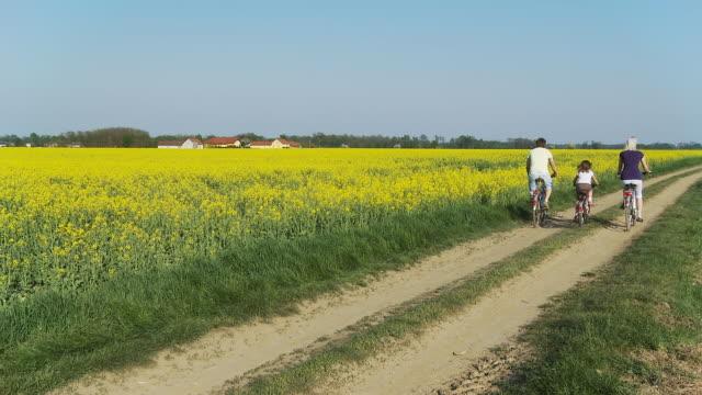 stockvideo's en b-roll-footage met hd: family cycling along fields - twee ouders