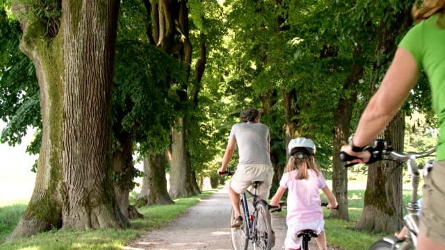 vídeos de stock, filmes e b-roll de grou hd: família ciclismo por uma estrada margeada por árvores - dois genitores