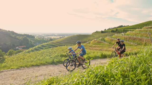 ws family cycling in countryside - prekmurje stock videos & royalty-free footage