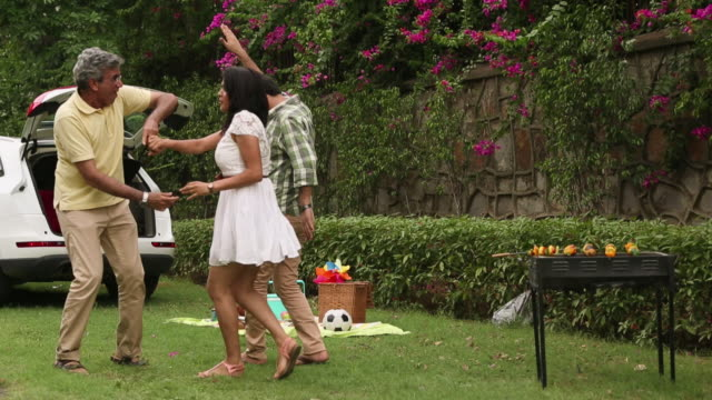 family dancing in the park - ピクニック点の映像素材/bロール