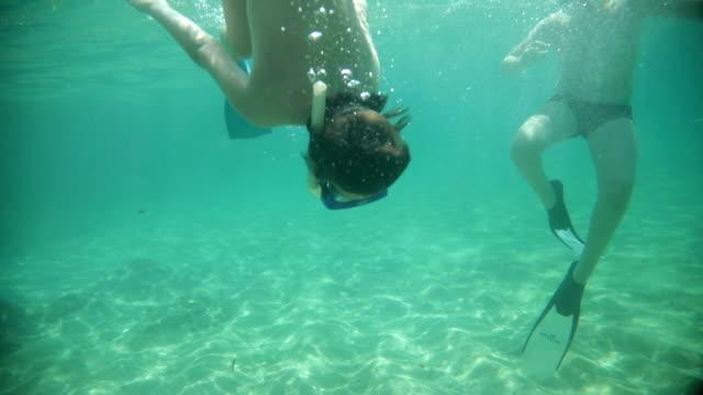 immersioni subacquee in famiglia in mare - undersea video stock e b–roll