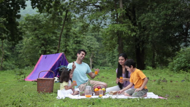 family drinking juice in a forest, malshej ghat, maharashtra, india - indian subcontinent ethnicity stock videos & royalty-free footage