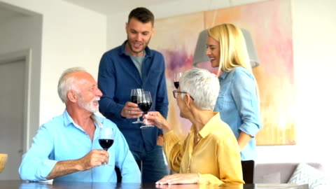 family drinking wine - boyfriend stock videos & royalty-free footage