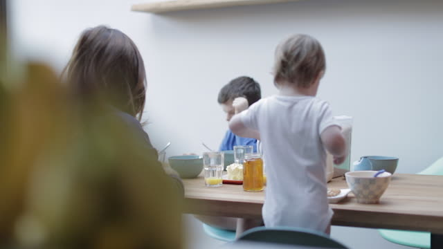 vídeos de stock, filmes e b-roll de family eating breakfast together - faca faqueiro