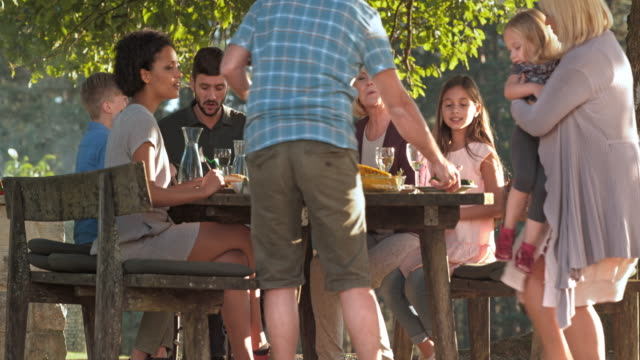 family enjoying a nice barbecue under a tree in sunshine - family reunion stock videos and b-roll footage