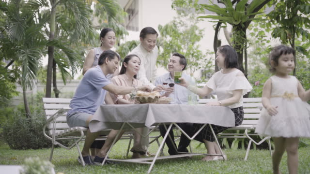 family enjoying barbecue in the garden. - large family stock videos and b-roll footage