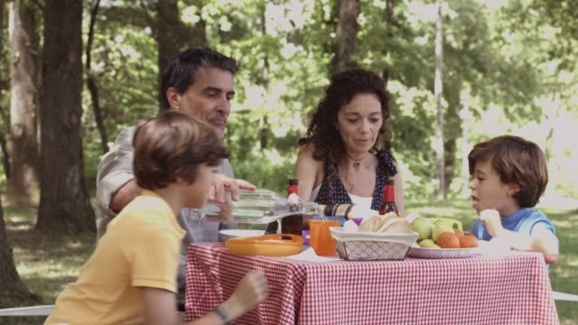 family enjoying breakfast in forest during summer - breakfast stock videos & royalty-free footage