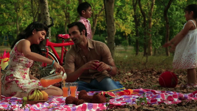 family enjoying in the park, delhi, india - saft stock-videos und b-roll-filmmaterial