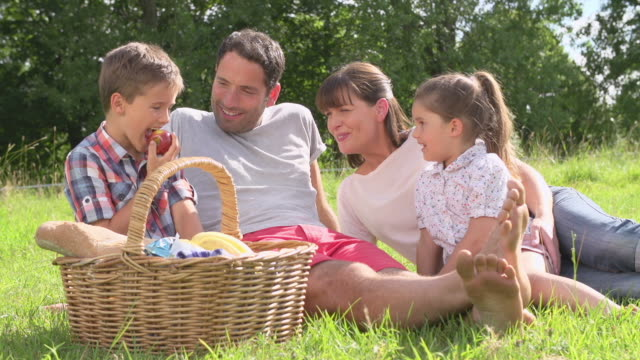 family enjoying summer picnic in countryside - picnic stock videos and b-roll footage