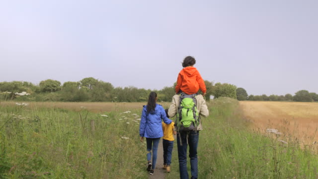 family enjoying time together - walking stock videos & royalty-free footage