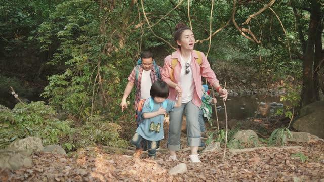 vidéos et rushes de famille explorant la forêt sur le sentier de randonnée - activité de plein air