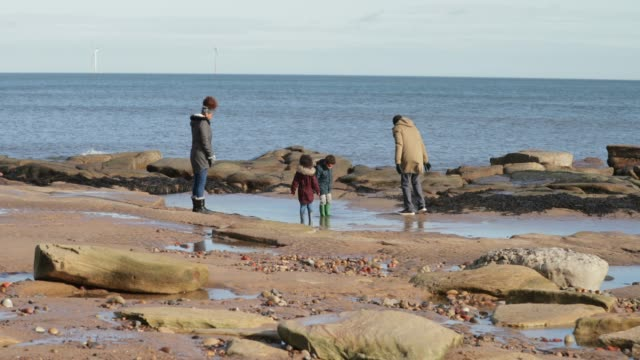 family exploring the beach - whitley bay stock videos & royalty-free footage