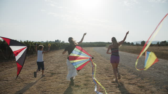 family flying kites on a sunny summer day - three people stock videos & royalty-free footage