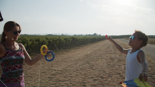 family flying kites on a sunny summer day - strada di campagna video stock e b–roll